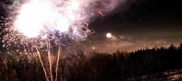 Privates Feuerwerk verbieten, fordert Tierschutz Austria von Regierung