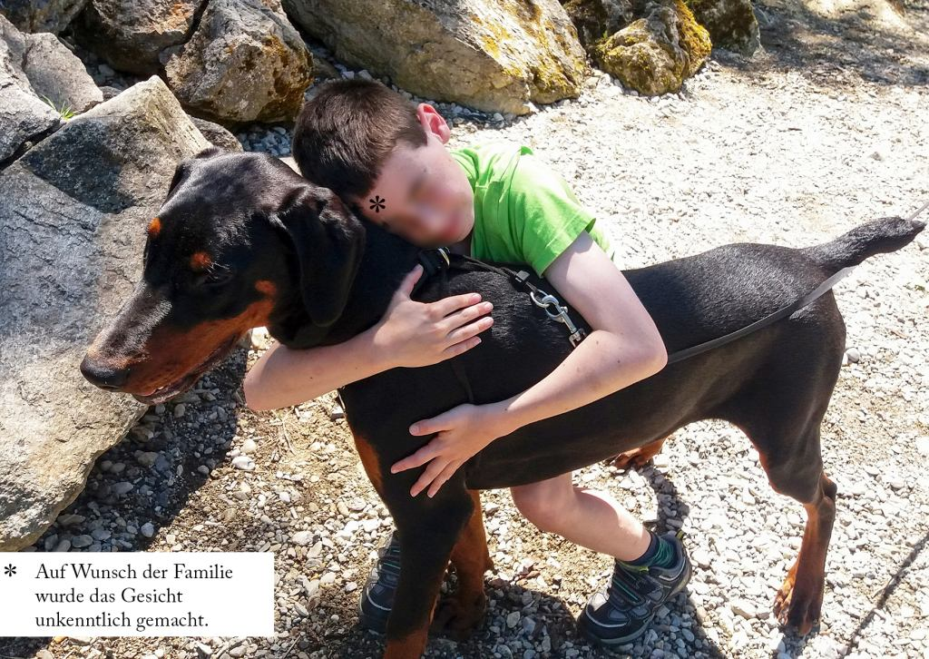 Spendenaufruf Begleithund Arthus