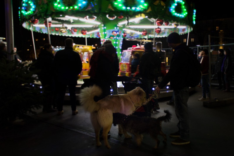 Hunde Weihnachtsmarkt