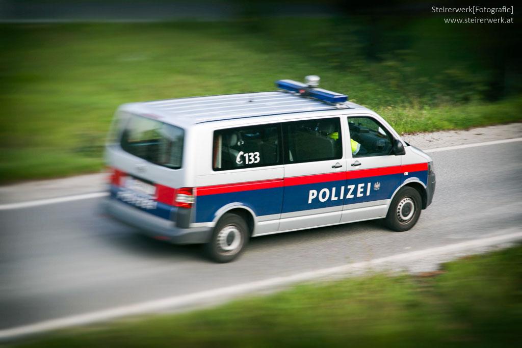 Polizei rettet Golden Retriever das Leben